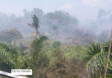 Hari Raya Kurban kali ini, Masyarakat desa Pulau Muda pelalawan berjibaku melawan Api.